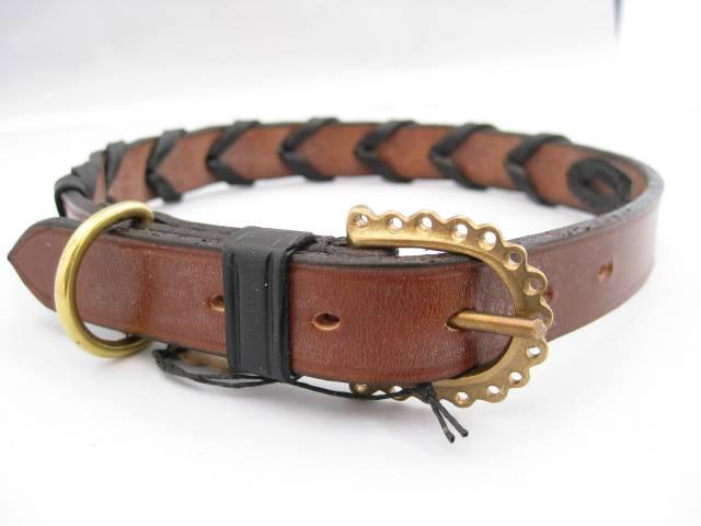 Laced dog collar